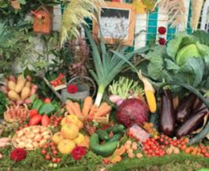 Un marché présent chaque vendredi de 8 h à 13 h sur la place du Monument, tout au long de l'année. Vous y trouverez : fromages, boucherie, traiteur, poissonnerie, primeurs, fleurs (selon saison), a...