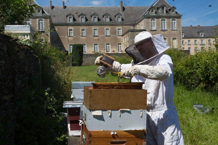 Journées du patrimoine 2020 - Dans le monde des abeilles