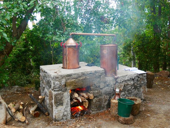 Journées du patrimoine 2019 - Distillation de géranium
