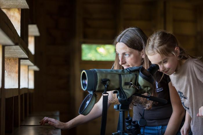 Journées du patrimoine 2019 - Observation des oiseaux de l'étang avec la LPO