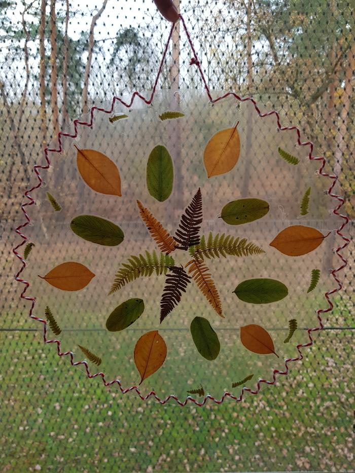 ANNULE - Fabrication d'un attrape soleil végétal