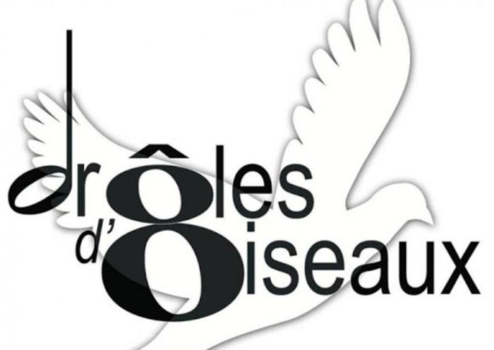 Stages - Vielle à Roue, Violon, Musique d'Ensemble