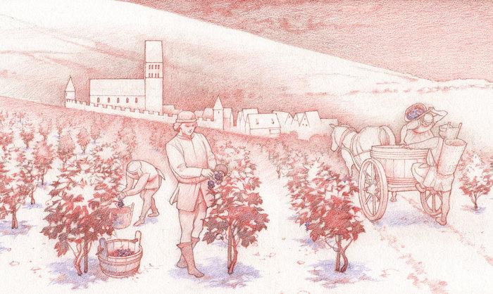 Journées du patrimoine 2019 - Visite en famille dans l'exposition « Du vin pour les Castinétains ! Récolté et mis en fût par l'archéologie »