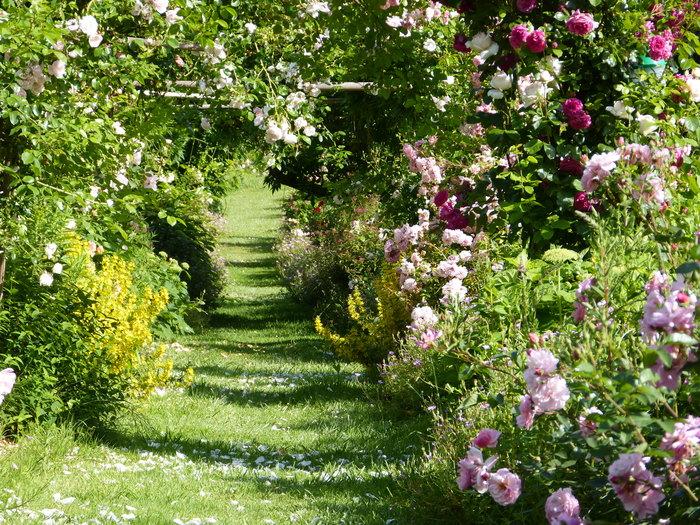Journées du patrimoine 2020 - Visite du jardin du manoir de Val en Sel