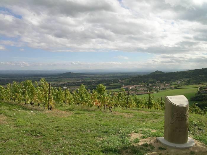 Journées du patrimoine 2020 - Balade accompagnée et dégustation de Côtes du Forez