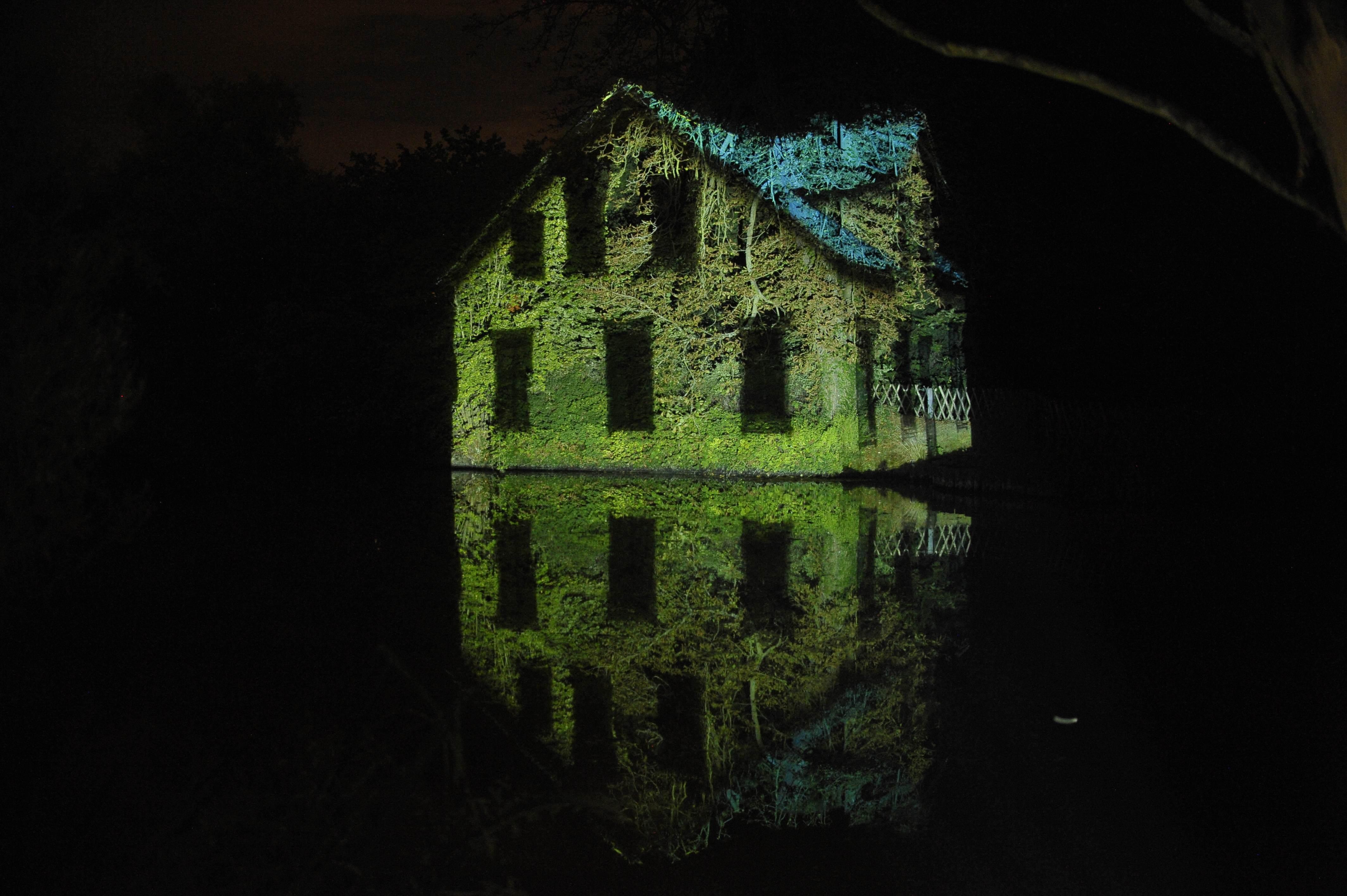 La vidéaste Sophie Laly propose une immersion dans le paysage, par le biais de projections à découvrir au fil de la nuit tombante...