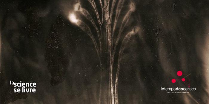 Exposition : Tchernobyl Herbarium