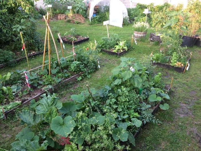 Les jardins zéro déchets vert : la  lasagne permacole  avec Au Ras du Sol et Germaine  Veille