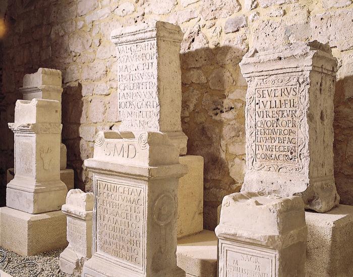 Nuit des musées 2019 -Visite libre et gratuite des collections du Musée archéologique