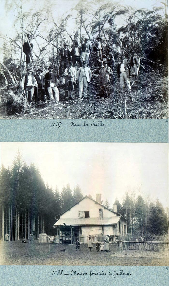 Journées du patrimoine 2019 - Les racines de la forêt