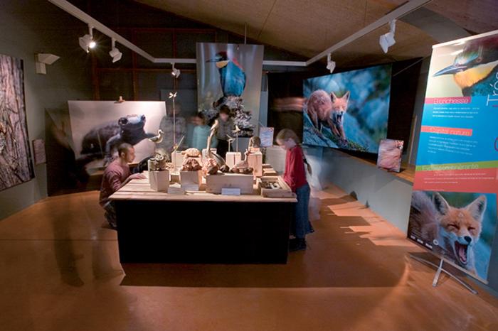 Journées du patrimoine 2019 - Atelier à l'Ecomusée de la Forêt