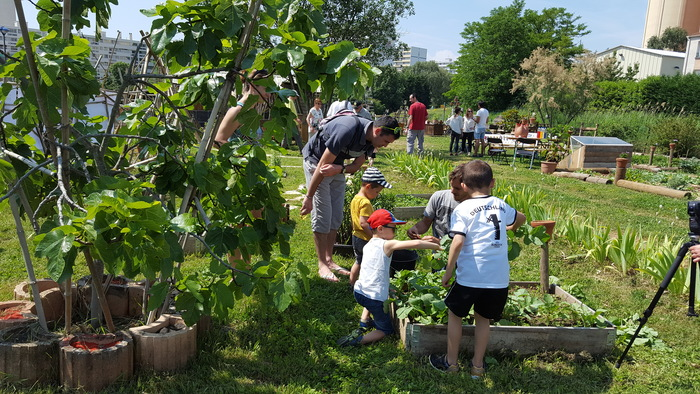 Journées du patrimoine 2020 - Rendez-vous aux Jardins