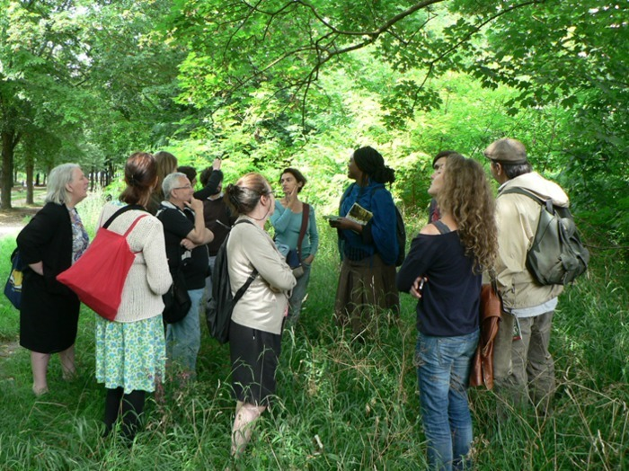 Venez découvrir les plantes sauvages d'Ile-de-France le temps d'une balade dans le parc des Beaumonts