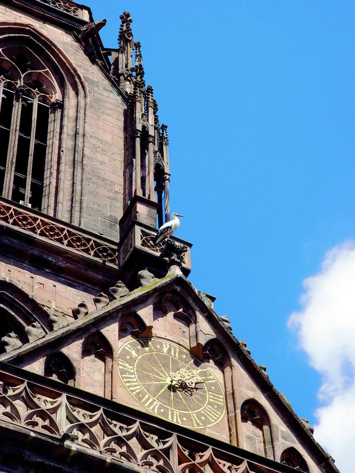 Journées du patrimoine 2020 - L'église Saint-Georges, dame de pierre et de verre