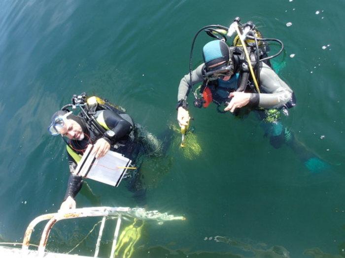 Journées du patrimoine 2020 - À la découverte des fouilles subaquatiques !