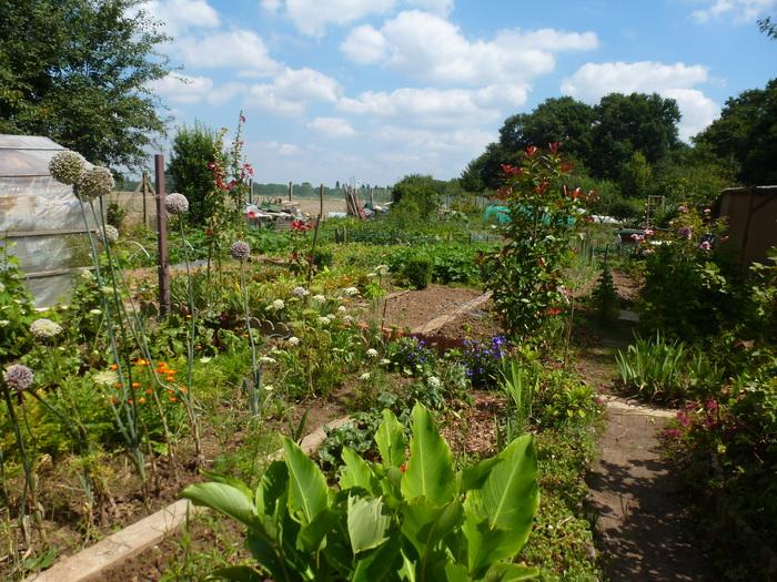 Journées du patrimoine 2020 - Visite jardins familiaux du bois de Cerdon Valenton