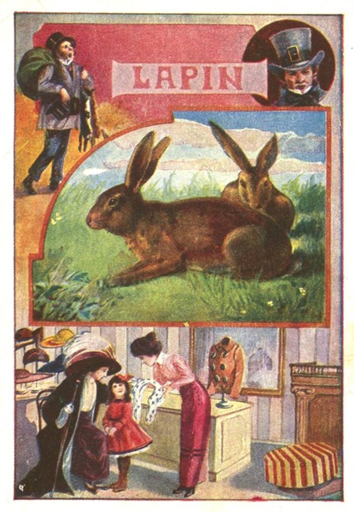 """Conférence de Christian Thomas, Marchand de peaux de lapins, un métier méconnu. Suivi de la projection du documentaire """"Lapin tu as eu  ma peau"""" de Marc Thomas Charley et d'un goûter."""