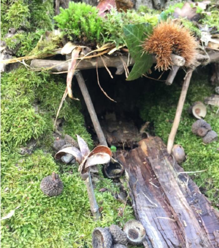 Dans l'esprit du land art, créez une miniature de votre maison idéale en pleine nature. Un atelier poétique pour s'immerger dans la forêt.