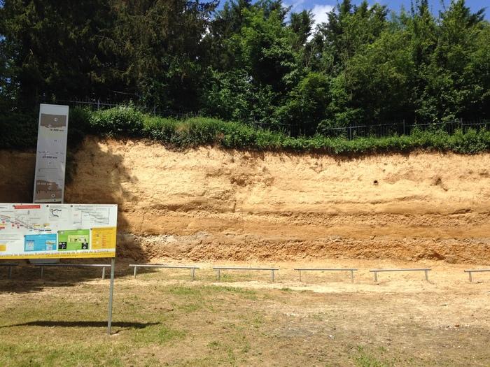 Journées du patrimoine 2020 - Jardin archéologique de Saint Acheul : visites libres et guidées