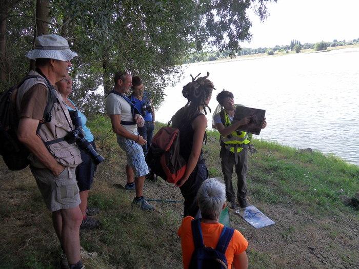 Journées du patrimoine 2019 - À la découverte de la biodiversité en Loire.