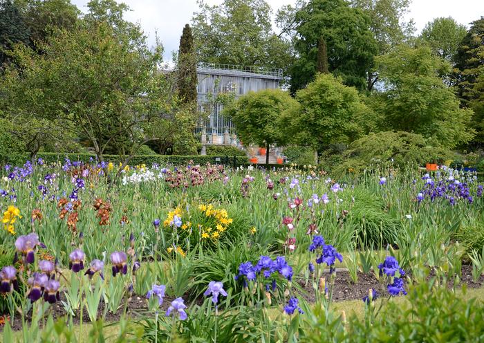 Journées du patrimoine 2020 - Visite guidée du jardin des plantes