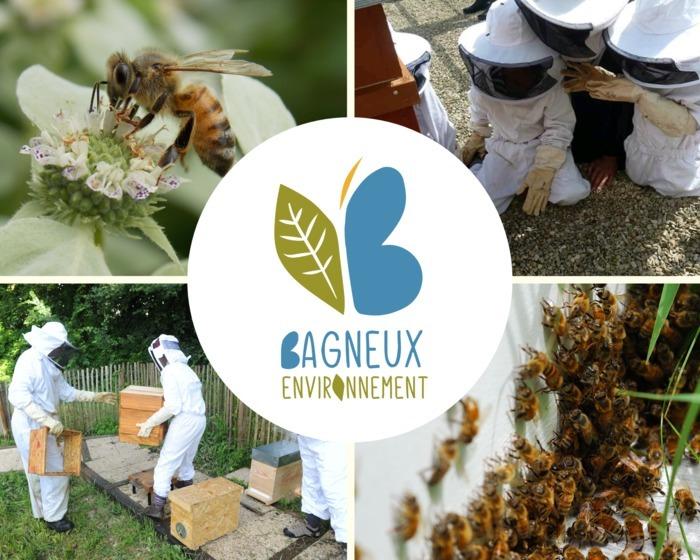 Les P'tits Ateliers Nature : Les abeilles domestiques