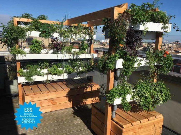 TOUR DE L'ESS 2020 – Visite «Un jardin sur le toit d'un hôtel en plein coeur de la ville» avec Kanopée Koncept