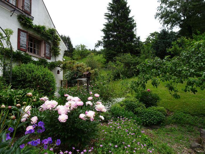 Journées du patrimoine 2019 - Présentation des jardins traditionnels de la ferme de Niederwyhl