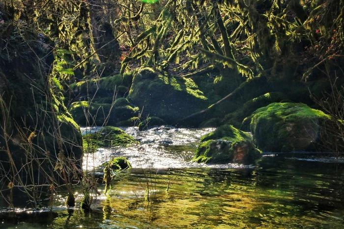 Journées du patrimoine 2020 - Vieu secret : de l'aqueduc romain à la Source du Groin. Visite au fil de l'eau.