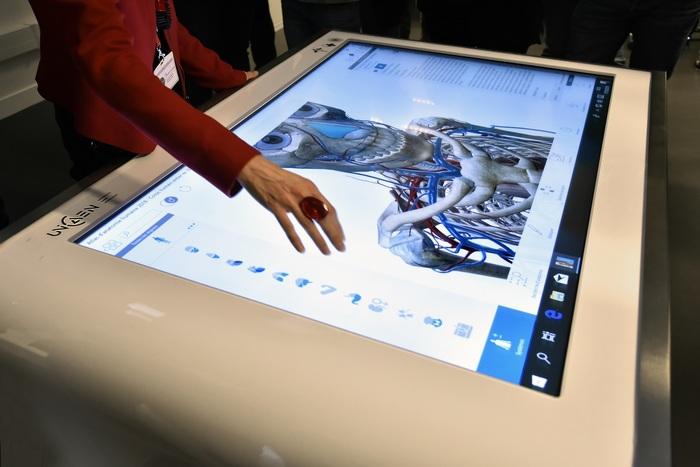 Journées du patrimoine 2019 - Atelier table tactile d'anatomie numérique, Bibliothèque universitaire Madeleine-Brès