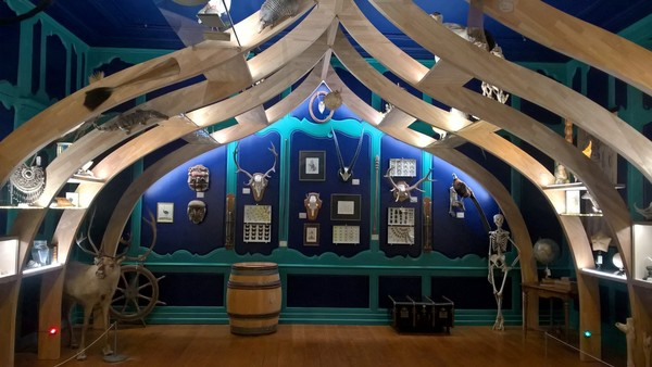 Nuit des musées 2019 -Visite de l'espace muséographique et du cabinet de curiosités