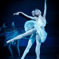 Menton - Spectacle de danse : « Le lac des Cygnes »