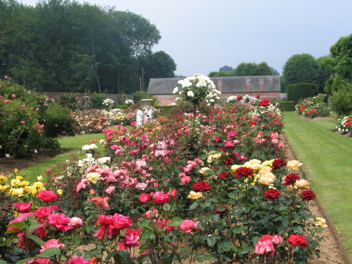 Journées du patrimoine 2019 - Visite libre de la roseraie, du potager et du labyrinthe