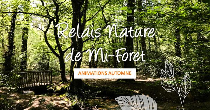 Journées du patrimoine 2020 - Balade en VTT à la découverte du Patrimoine de la forêt de Rennes