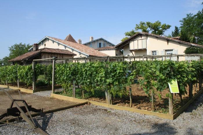 Journées du patrimoine 2020 - Découverte de deux maisons d'un ancien domaine agricole