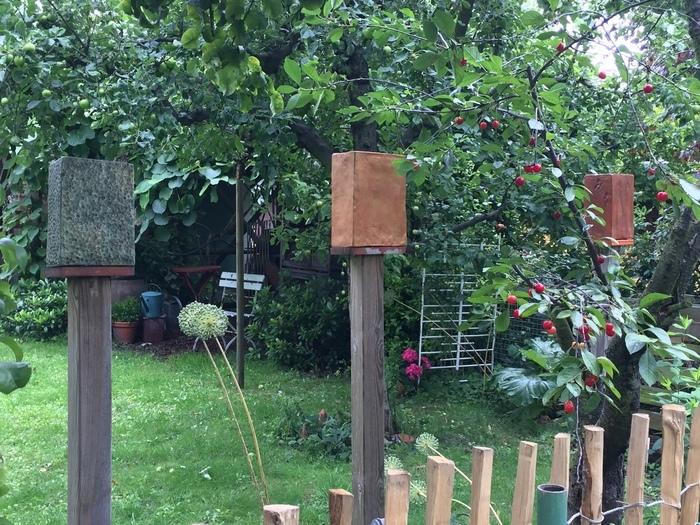 Blick über den Zaun. Kunst, Respekt vor der Natur und die Geduld einer französischen Gärtnerin im Wildgarten