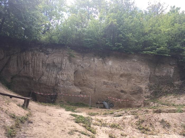 Journées du patrimoine 2020 - ANNULÉ - Visite commentée du célèbre site paléontologique de Grignon : la falunière de Grignon