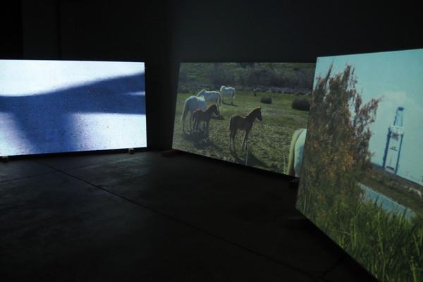 Nuit des musées 2019 -Duo entre images et chorégraphie, avec François Lejault et Simon Bailly