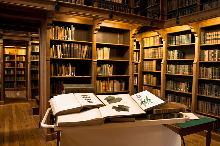 Journées du patrimoine 2019 - L'école d'ingénieurs Agrocampus Ouest ouvre les portes de sa bibliothèque patrimoniale en chêne typique du XIXe siècle