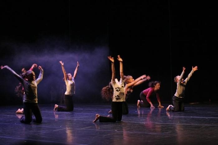 Cours de danse techniques, ateliers chorégraphiques et Hip-Hop