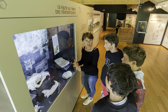 Journées du patrimoine 2020 - Visite guidée gratuite du Musée de la Préhistoire