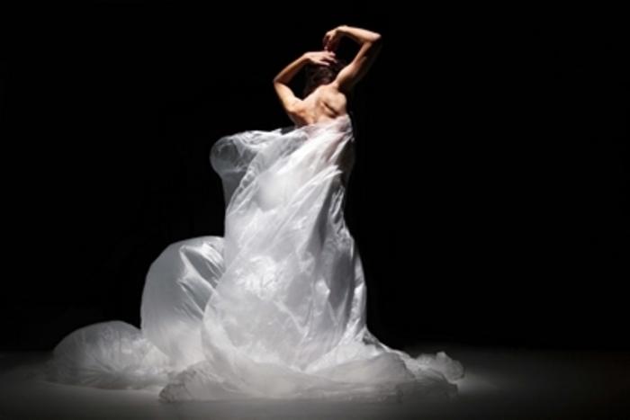 La compagnie Les Yeux Grands Fermés est une compagnie de danse contemporaine, créée en 2012 par Anne Perbal à Orléans. Elle y développe trois axes de création : performances in situ, photographies et sculptures, notamment à destination des lieux patrimoniaux et atypiques.