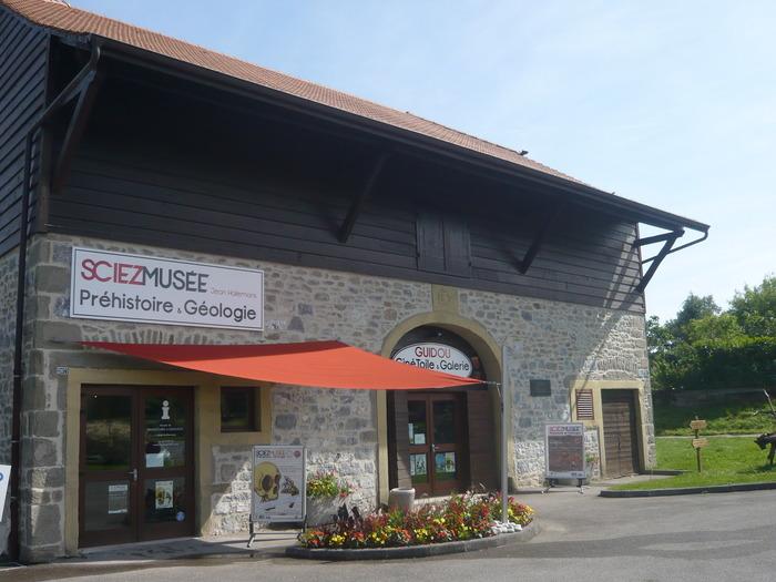 Journées du patrimoine 2020 - Visite libre du musée de Préhistoire et Géologie