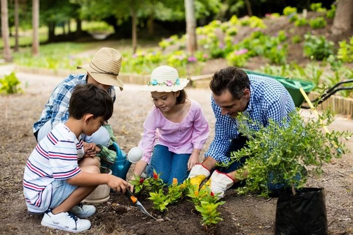 A travers des actions très concrètes de jardinage (plantation, semis, récolte), faites découvrir à vos enfants l'importance du végétal dans le cycle de la vie et dans l'alimentation
