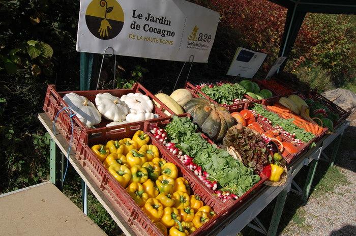 Journées du patrimoine 2020 - Annulé Visites guidées du jardin de Cocagne de la Haute-Borne