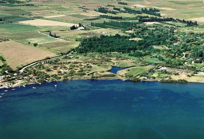 Balade conte et nature sur les berges de l'étang à Saint-Laurent