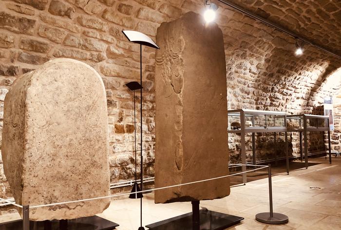 Nuit des musées 2019 -Le service départemental d'archéologie de l'Aveyron : aperçu de 10 ans de recherches