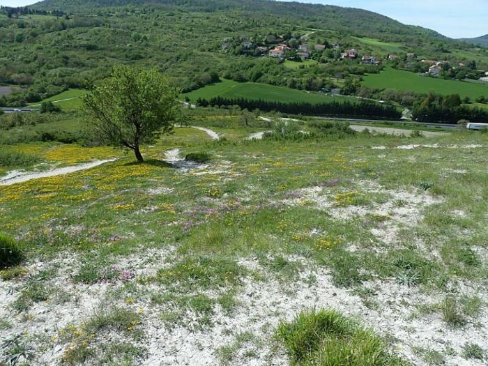 Journées du patrimoine 2020 - Balade accompagnée : Paysages et petit patrimoine du Puy d'Aubière