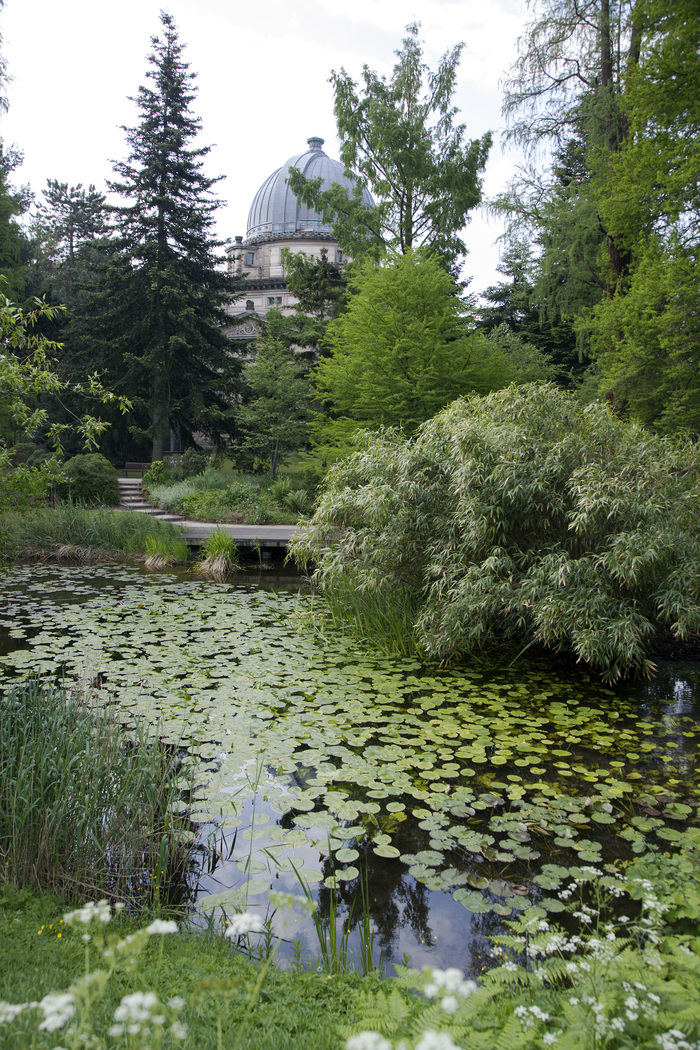 Journées du patrimoine 2019 - Histoire et collections du Jardin botanique