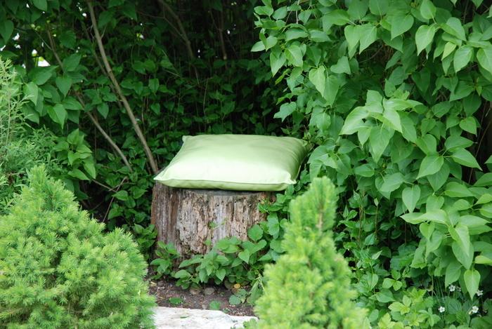 Pflanzenmeditation: Sommerfrische im Gartenwinkel Pfaffenwinkel